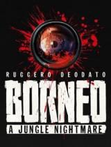 BORNEO: A Jungle Nightmare SWITCH