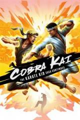 Cobra Kai: The Karate Kid Saga Continues SWITCH