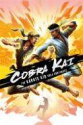 Cobra Kai: The Karate Kid Saga Continues portada
