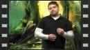 vídeos de Guild Wars 2