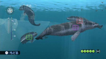 Endless Ocean 2 - Los secretos del océano esperan para ser descubiertos en Febrero  - Noticia para Endless Ocean 2: Aventuras bajo el mar