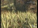 9 nuevas imágenes de Metal Gear Solid 3: Snake Eater