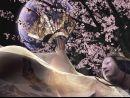 Más de 3 minutos de video de Onimusha: Dawn of Dreams