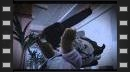 vídeos de Naughty Bear: Panic in Paradise
