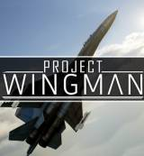 Project Wingman PC