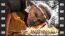 vídeos de Virtua Fighter 5 Final Shodown